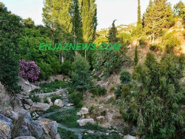 شلالات اودية عجلون طبيعة جمالية لا تراها عين وزارة السياحة - صور