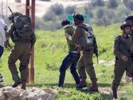 إصابة جندي إسرائيلي واعتقال 13 فلسطينيا في الضفة